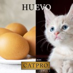 Huevo ingrediente en CATPRO